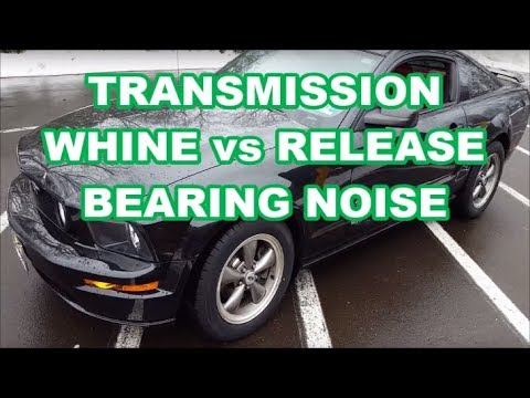 MUSTANG Transmission BEARING WHINE NOISE 5spd NOISY TRANS VS THROW OUT  BEARING