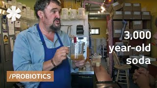 Future soda? Micro-fermented, probiotic, water kefir brew