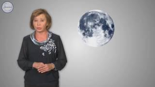 Физика 7 Вес воздуха  Атмосферное давление  Причина появления атмосферн