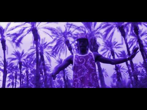 Flatbush Zombies - Palm Trees (Slowed & Screwed)