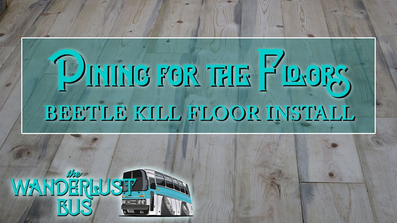 Wanderlust bus beetle kill pine flooring installation pining for wanderlust bus beetle kill pine flooring installation pining for the floors tyukafo