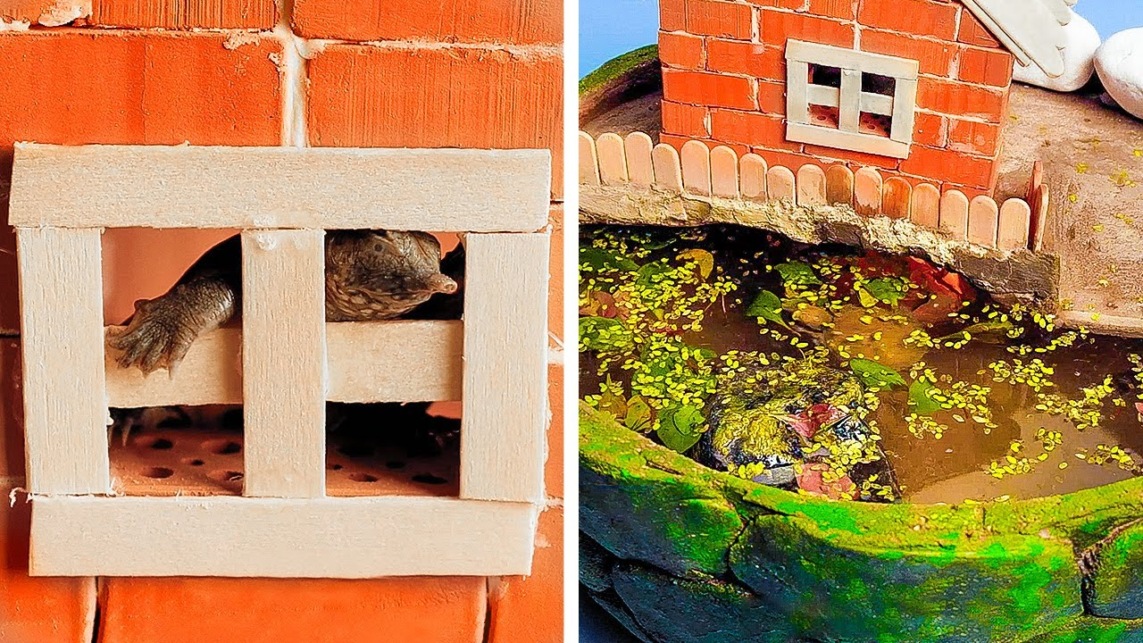 🐢 DIY Turtle House and Cement Fountains, Aquariums and Waterfalls