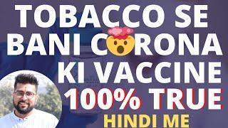 Corona Vaccine Major Updates    तंबाकू से बनी कोरोना की वैक्सीन   Oxford Vaccine Trials kab karga?