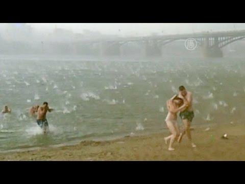 Ураган и град в Новосибирске (новости)