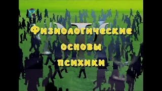 видео Теоретические основы изучения памяти в психологии