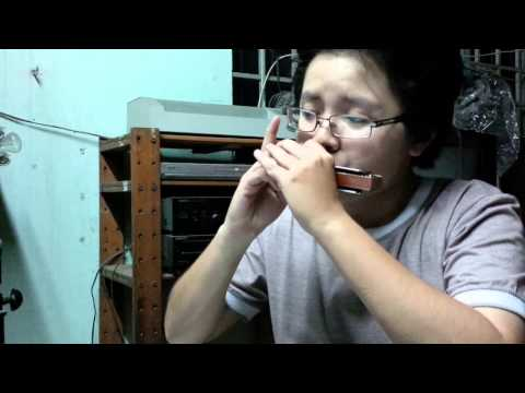 Thằng Cuội - Harmonica - Ca Hoàng My
