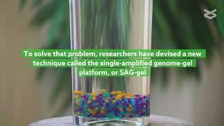 care să lucreze cu varicoză este posibil să se trateze comprimatele varicoase