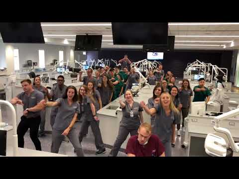 Watch LSU's School of Dentistry put its spin on viral 'In My Feelings' challenge
