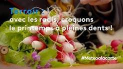 Terroir : avec les radis, croquons le printemps à pleines dents !