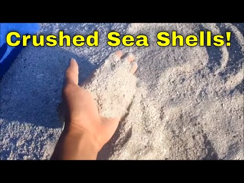 Sea Shell/Oyster Shell Processor Grinder Hammer Mill Machine