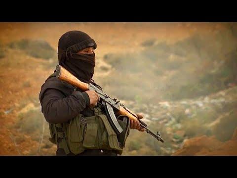 euronews (en español): Erdogan promete exterminar a las milicas kurdas