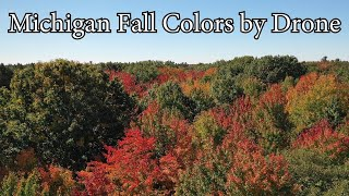 Amazing Michigan Fall Colors by Mavic Pro 2 Drone 2018
