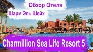 Шарм Эль Шейх. Charmillion Sea Life Resort 5* Обзор