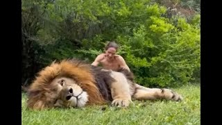 Experts confirm, the lion's mane is for protection