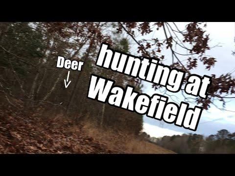 Hunting in Wakefield Virginia!  Hit!!