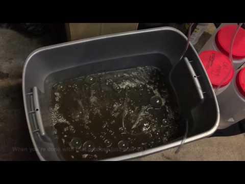 Compost tea for cannabis plants ( grow tent edition)