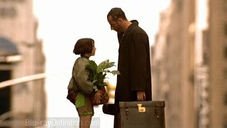 Leon The Professional - Ok