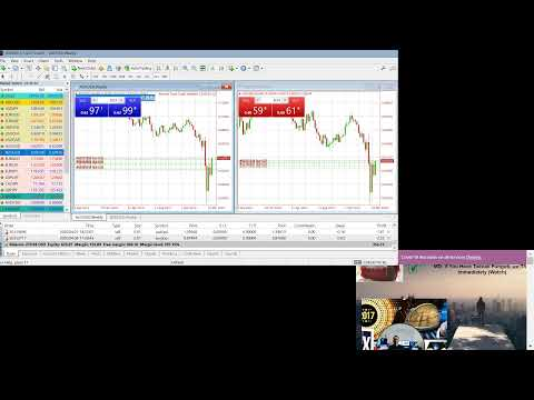 What is micro account forex
