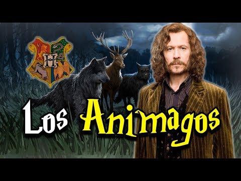 ¿Qué son los Animagos?Kaynak: YouTube · Süre: 9 dakika56 saniye