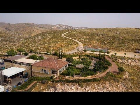 El Vigilante E10: La Bodega Psagot Y El Renacimiento De Los Antiguos Viñedos De Israel
