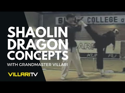 Grandmaster Villari Teaches Shaolin Kempo Karate Dragon Technique