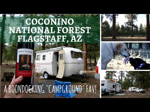 Coconino National Forest, Flagstaff, AZ ~ A Boondocking