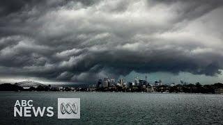 Tornado wreaks havoc in Sydney