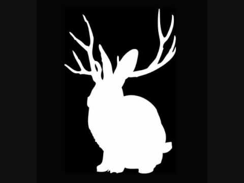 Miike Snow Animal