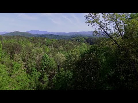 Established Smoky Mountain rental for sale at 1825 Fantasy Way