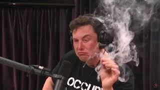 Илон Маск курит марихуану в ефире Elon Musk Smokes marijuana