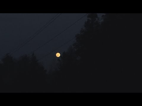 Marry Me - Jason Derulo - Acoustic Cover by Carley Hope