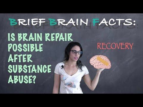 Can The Brain Recover From Addiction