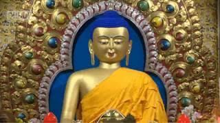 """Далай-лама. Учения по """"Мадхьямака-аватаре"""" Чандракирти. День 1"""