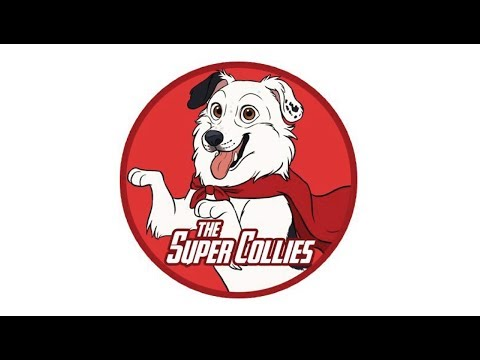 "Sport PAWks - The Super Collies! As seen on ""America's Got Talent"""