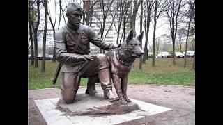Современные проблемы собаководства в России и мире