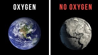 What Would Happen If The World Lost Oxygen For 30 Seconds?