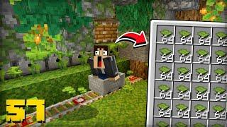 FIZ UMA FARM DE DREAPLEAF da 1.17 ! - Minecraft Survival 57