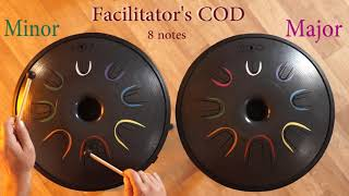 Facilitator's COD minor + major
