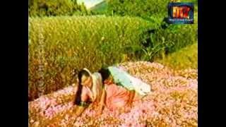 shankar ganesh mookkutthi puthiya thoranangal
