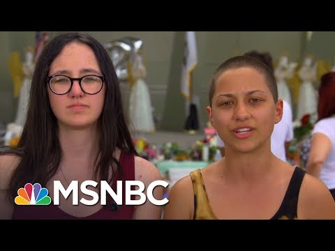 """Parkland Student To Congress: """"This Is Our Fight Now, Because You Messed It Up""""   MSNBC"""