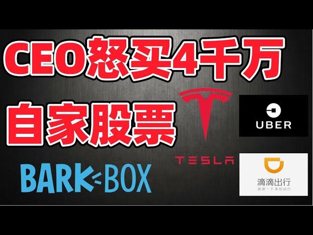 猴哥财经 | 美股 | 本周五件大事,CEO狂买4千万/特斯拉7月涨跌关键/UBER本周上涨/买入BARK?