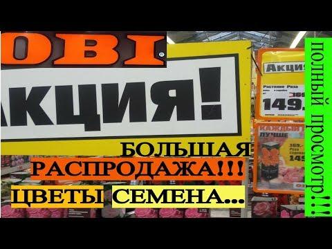 ОБИ OBI Март-Апрель 2019 // Новинки! Распродажа цветов! // Для ДАЧИ!