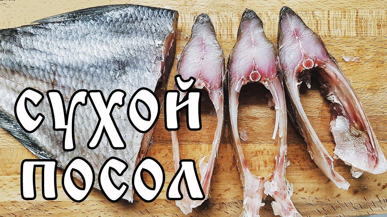 Как ПОСОЛИТЬ  крупную рыбу? СУХОЙ посол ЛЕЩА.