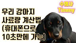 반려견 (개, 강아지) 사료량 계산법 (10초만에 가능…