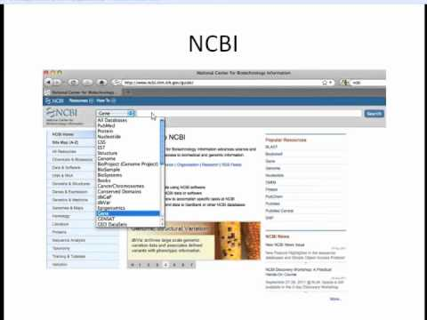 How to Align Sequences Webinar (1/7) Intro and NCBI Overview