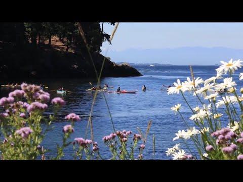Sea Kayaking the San Juan Islands