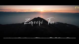 Zaroori Tha | Nostalgia | Rabab Instrumental | Hammad Durani