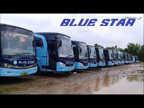Berkunjung Ke Tempat Bus Blue Star Di Pondok Cabe
