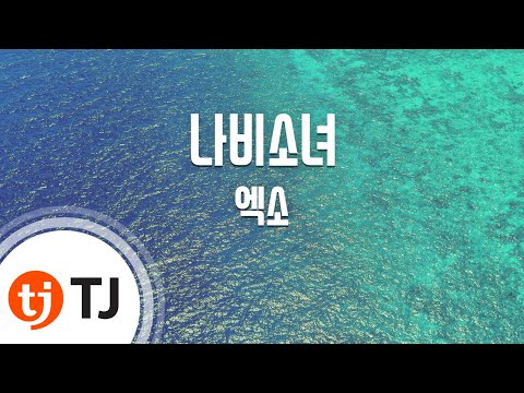 Don't Go 나비소녀_EXO 엑소_TJ노래방 (Karaoke/lyrics/romanization/KOREAN)