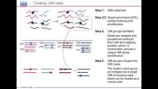 QIAseq Digital Sequencing and Biomedical Genomics Workbench: Application to Liquid Biopsy..